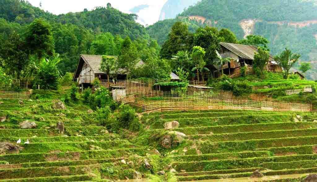 Vietnam Reisen - Grüne Landschaft in einem Seitental von Sapa (Originalbild Mirango Travel)